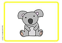 Koala_2